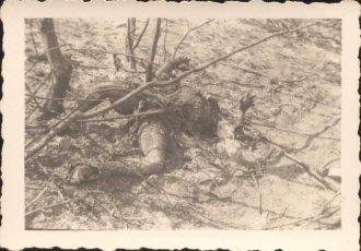 Фотографии немецкого офицера в СССР (1941/42г.) - I часть
